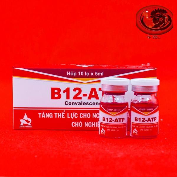 COMBO 10 LỌ Thuốc tăng lực cho gà đá B12 ATP