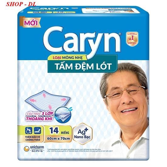 Tấm đệm lót Caryn XL 14 (60X70cm) nhập khẩu