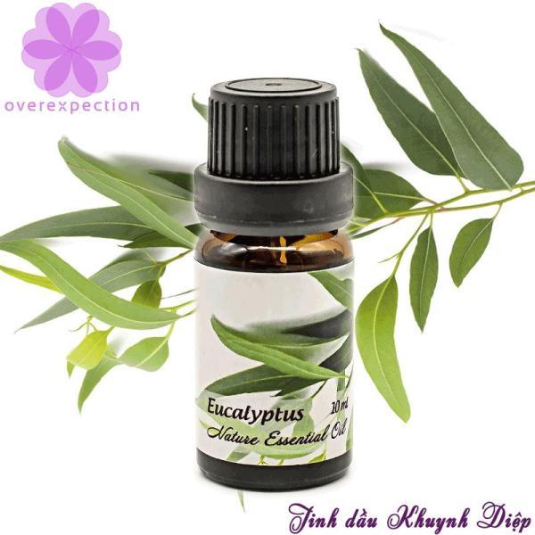 Tinh dầu khuynh diệp - Eucalyptus Essential Oil nhập khẩu