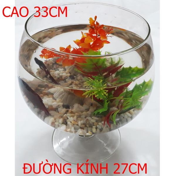 Bể Cá Ly Đại - Hồ Cá Để Bàn - Chậu Cá Thủy Tinh LC-Đ 33x27x27