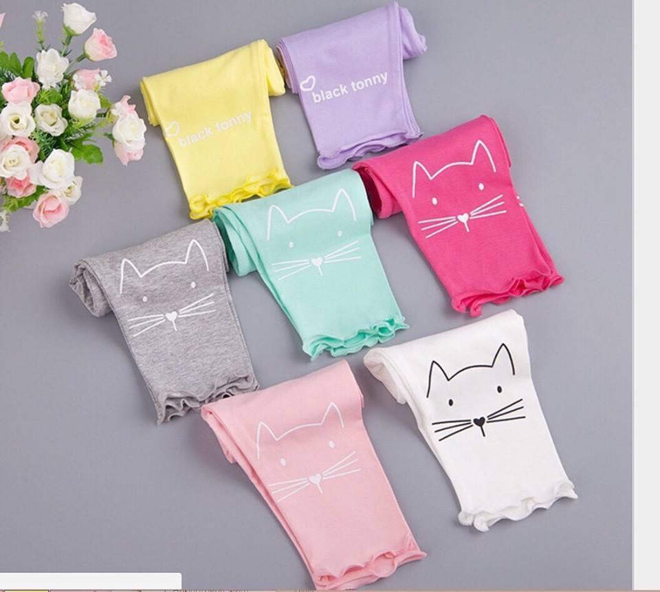 Giá bán sét 5 quần mèo cotton 4c