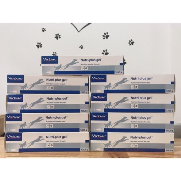 Gel dinh dưỡng Virbac Nutri-Plus Gel, cam kết hàng đúng mô tả, chất lượng đảm bảo, an toàn cho thú cưng nhà bạn