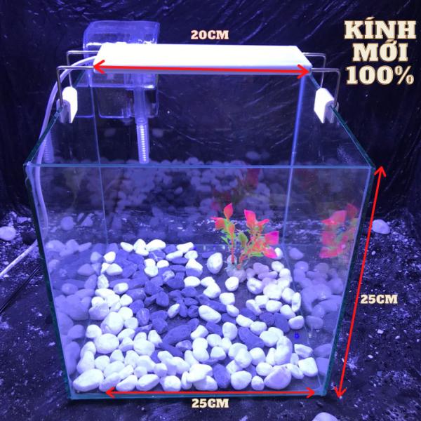 bể cá cubic 25cm combo hồ lọc đèn đầy đủ phụ kiện - bể cá mini - bể cá để bàn mini - bể cá mini