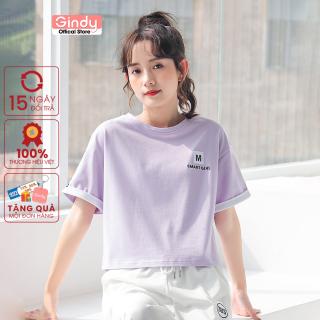 [ FULL SIZE + HÌNH THẬT ] Áo thun phông nữ tay lỡ GINDY SMART form vừa phong cách Unisex thời trang năng động A6175 thumbnail