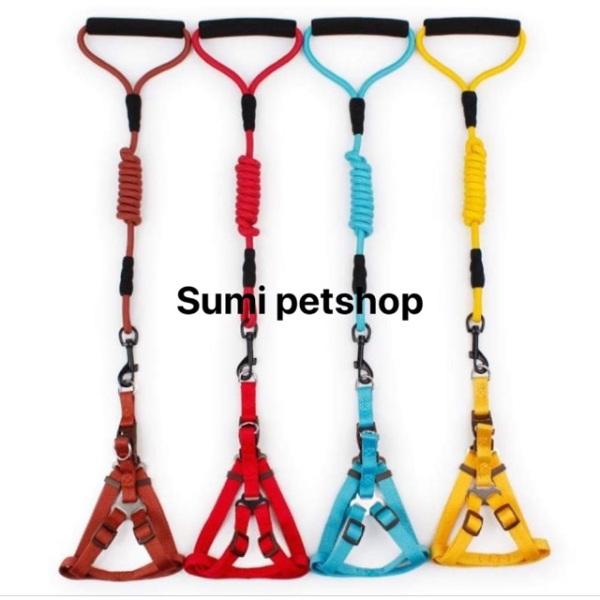 Full bộ Đai Yếm dây dắt cao cấp cho chó