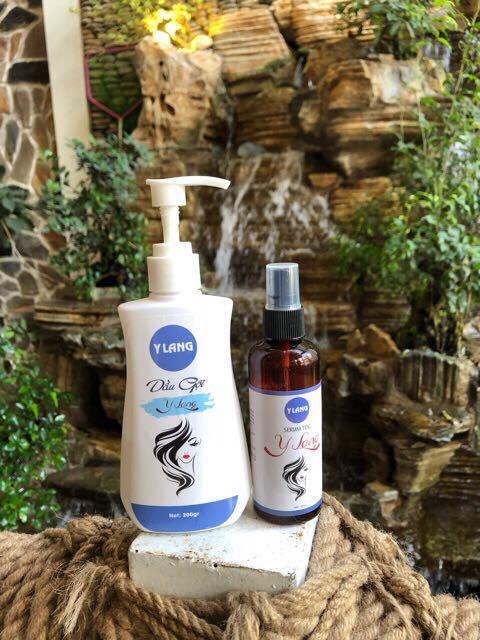 Combo dầu gội + serum trị rụng, kích thich mọc tóc Y Lang nhập khẩu