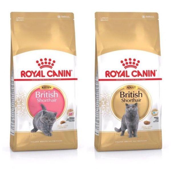 Thức ăn hạt dành riêng cho mèo anh lông ngắn (british shorthair) Royal Canin - adult 2kg