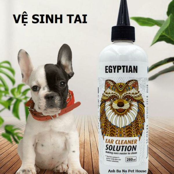 Vệ sinh tai chó mèo Egyptian