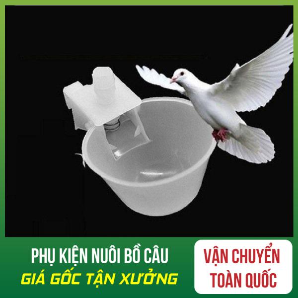Combo 50 Máng Uống Tự Động Cho Chim Bồ Câu - Máng Uống Tự Động Cho Chim Bồ Câu - Máng Uống Tự Động Cho Chim - Máng Uống Tự Động