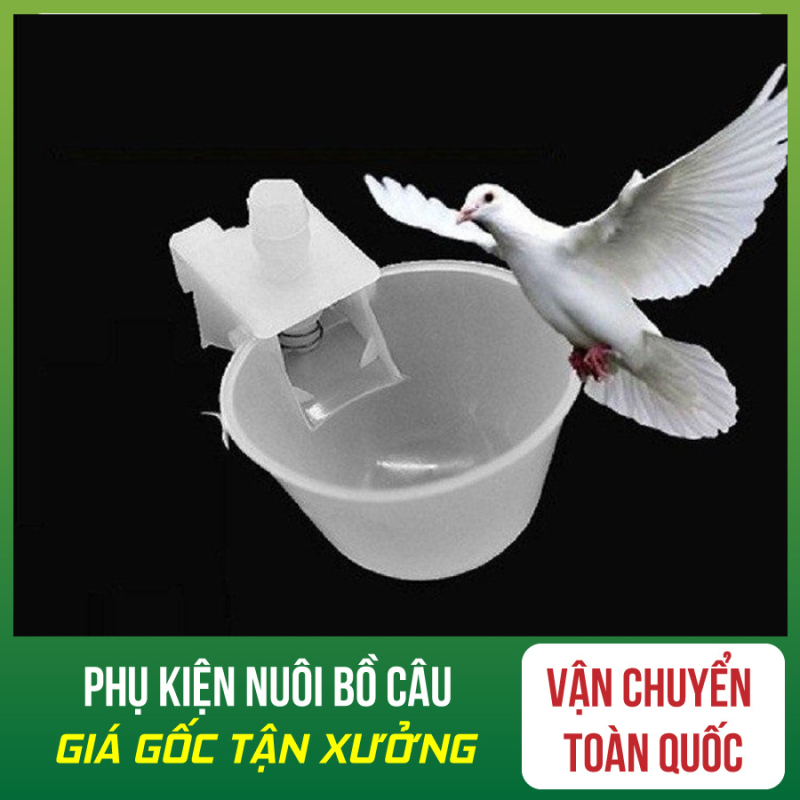 Combo 20 Máng Uống Tự Động Cho Chim Bồ Câu - Máng Uống Tự Động Cho Chim Bồ Câu - Máng Uống Tự Động Cho Chim - Máng Uống Tự Động