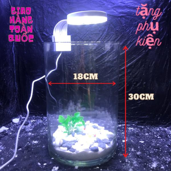 Bể cá mini để bàn kèm phụ kiện tiểu cảnh phân loại combo có hồ lọc đèn