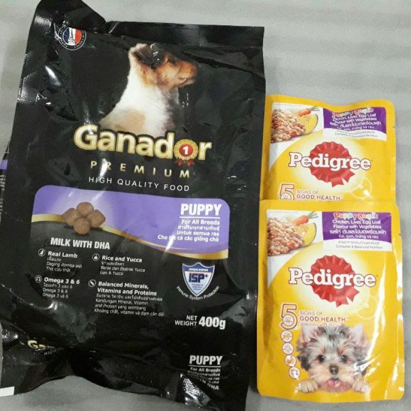 Combo Hạt Ganador và Pate Pedigree cho chó con