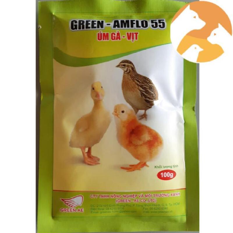 Thuốc gà đá úm Gà – Vịt con Green – Amflo 55 gói 100g