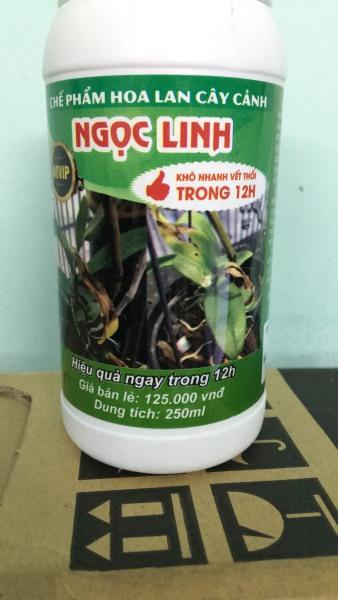chế phẩm chống thối nhũn và xử lý giá thể NGỌC LINH 12H lọ 250ml