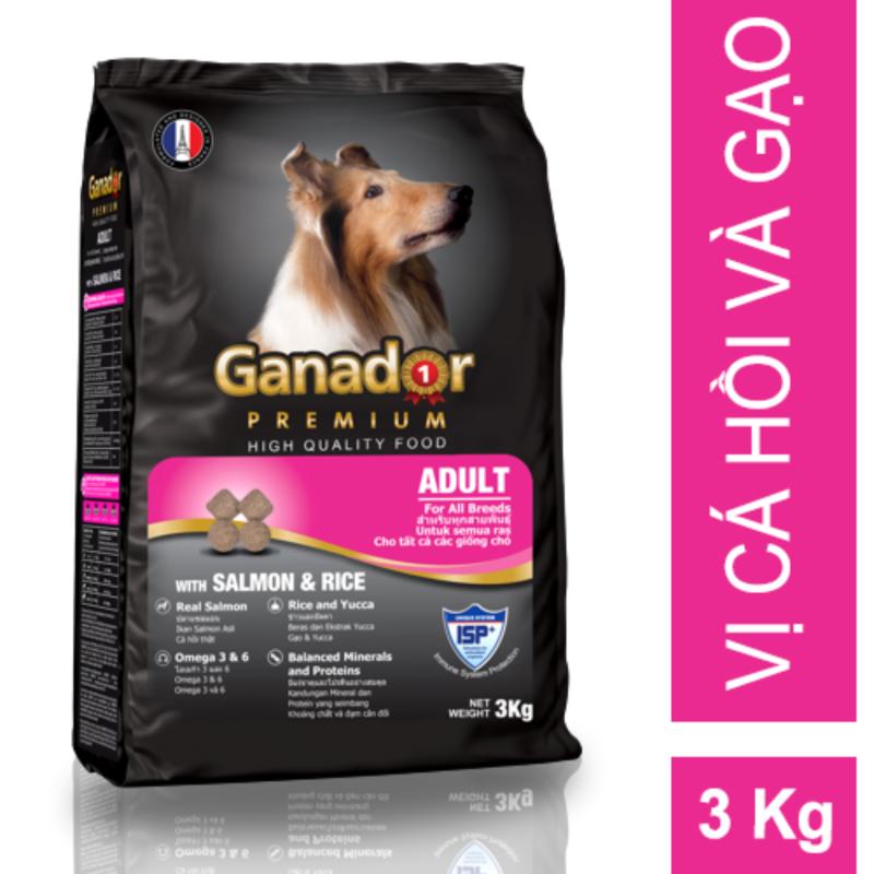 Thức ăn cho chó trưởng thành Ganador vị cá hồi & gạo Salmon & Rice 3kg