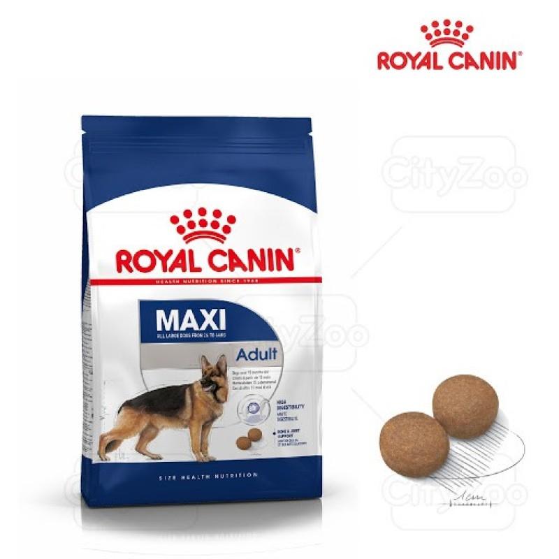 4kg Hạt Royal Canin Maxi Adult cho các dòng chó size lớn trên 15 tháng tuổi