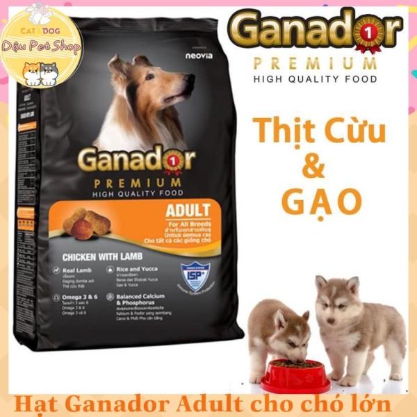 Thức Ăn Hạt Ganador Premium Cho Chó Lớn 400G