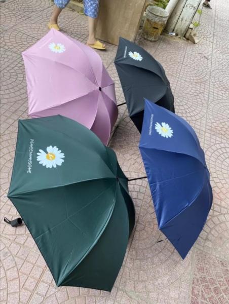 Giá bán Ô dù hoa cúc gập gọn Hàn Quốc. Rộng 98cm, Chống tia UV