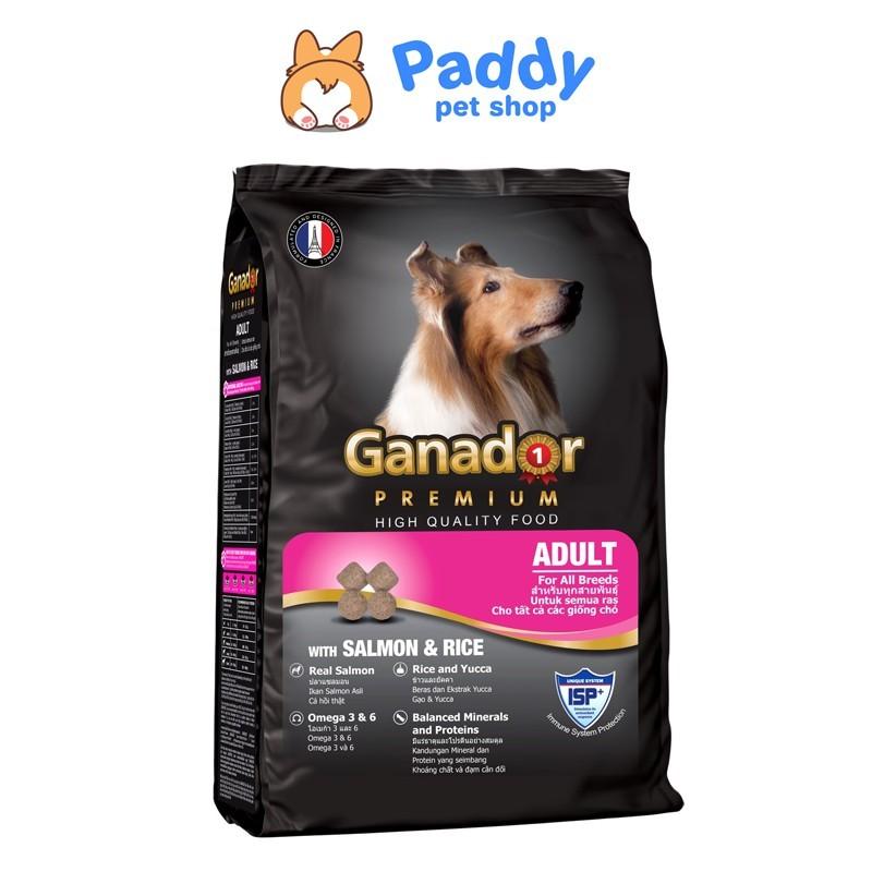 [3kg] Ganador Thức ăn hạt cho chó trưởng thành vị cá hồi & gạo