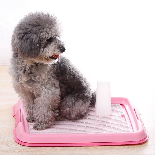 Khay vệ sinh cho cún,khay chắc chắn, nhựa dẻo không vỡ, thích hợp chó dưới 8 kg