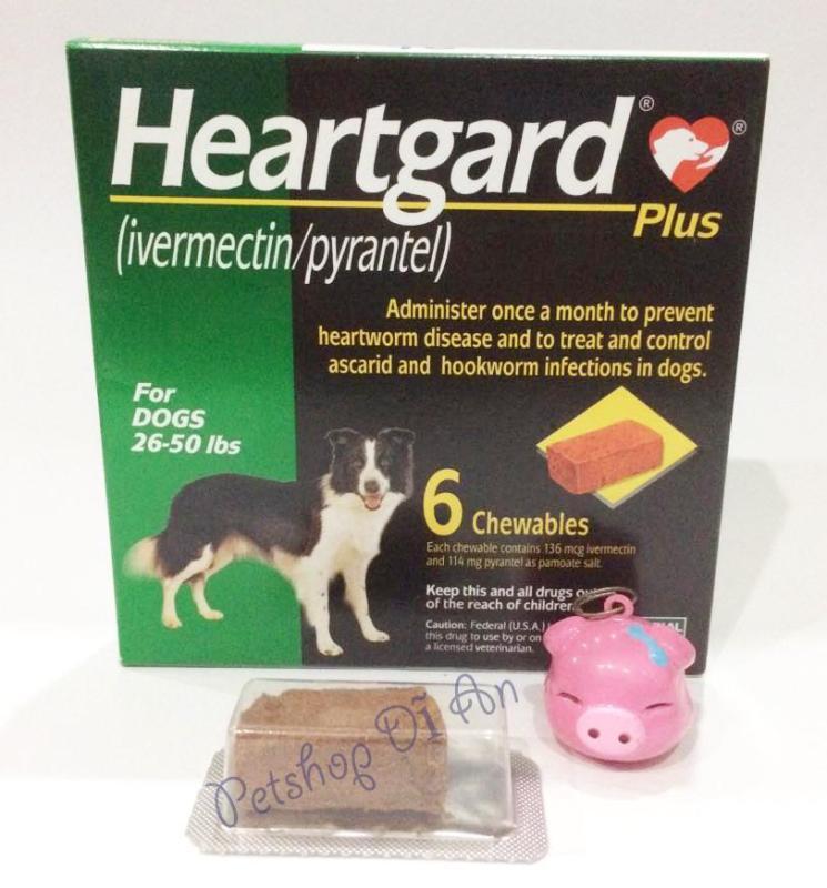 Hộp 06 viên nhai Heartgard Plus phòng & trị giun tim, giun đũa, giun móc cho chó 11.5 - 22.5kg