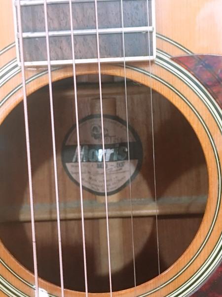đàn Guitar Moriss MD 507