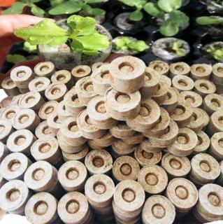 10 Viên Nén Ươm Hạt Bằng Mùn Dừa Đã Được Xử Lý , Bổ Sung Men Vi Sinh và Chất Dinh Dưỡng Hữu Cơ thumbnail
