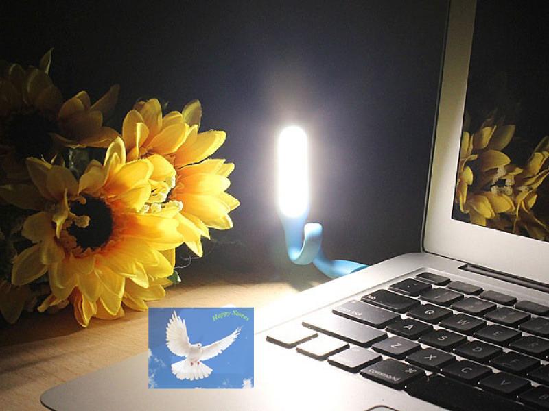 Bảng giá Đèn Led siêu sáng USB mầu ngẫu nhiên - HAPPY STORES Phong Vũ