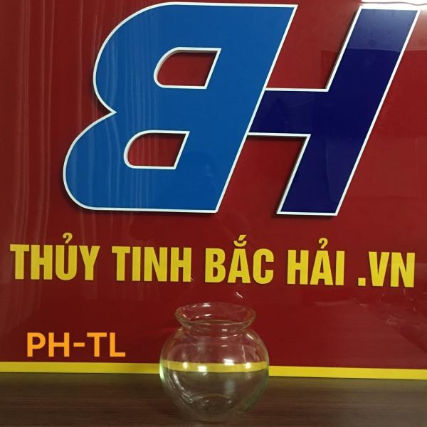 Mẫu Bình Bèo Nuôi Cá -TL Bình Thủy Tinh Và Hũ Thủy Tinh Ngâm Rượu Cao Cấp SX tại Việt Nam - Thủy Tinh Bắc Hải