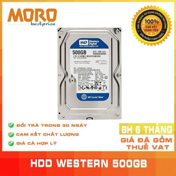 Bảng giá Ổ cứng HDD WD BLue 500GB - Nhập khẩu từ Nhật Bản, Hàn Quốc - Bảo hành 6 tháng Phong Vũ
