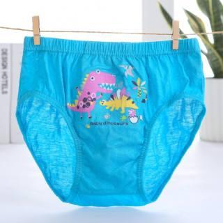 Hộp 5 quần sịp bé trai Hàn Quốc 100% cotton mẫu Khủng Long Xanh Lá