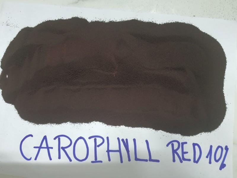 carophyll red 10% ( 10 gram )