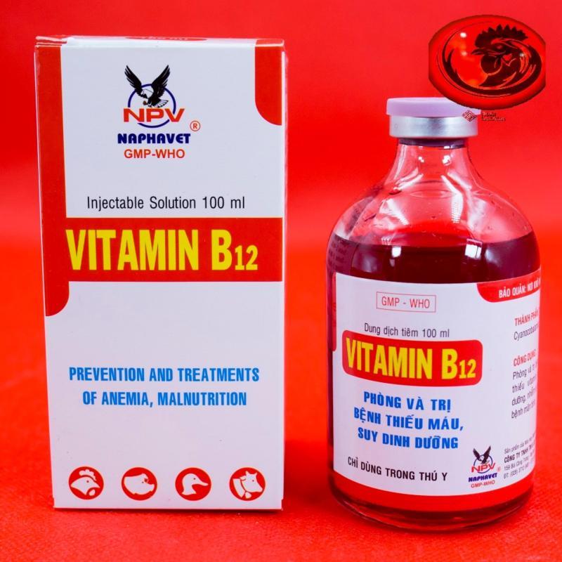 VITAMIN B12 100ML cho gà đá