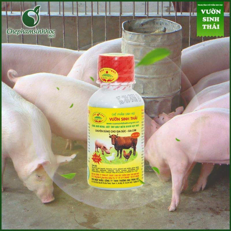 Vườn sinh thái chăn nuôi gia súc, gia cầm (dinh dưỡng cho vật nuôi)