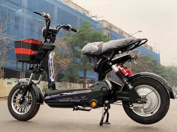 Mua xe đạp điện Raider