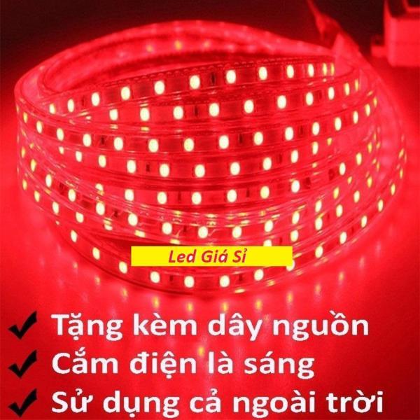 Bảng giá Đèn LED dây 5050 10m ống nhựa 220v tặng kèm 1 dây nguồn tốt. Điếp áp: 220V  Chiều dài cuộn: 10m  Chất liệu cao cấp  Màu sắc sáng