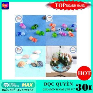Phụ kiện tiểu cảnh Rùa trang trí tiểu cảnh chậu cây mini terrarium hồ cá bonsai hòn non bộ sen đá xương rồng thumbnail