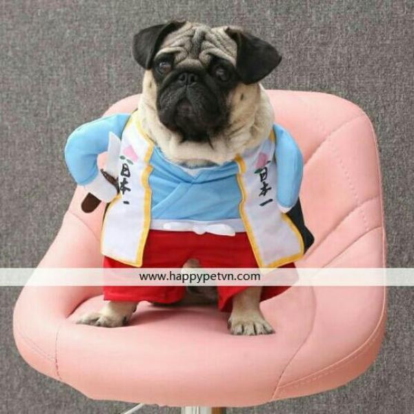 Áo thời trang cho chó mèo