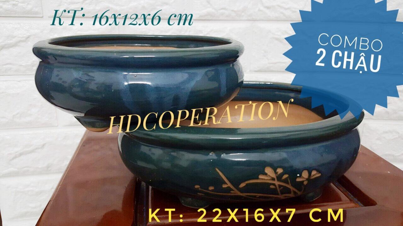 COMBO 2 chậu Trồng Cây Nội Thất - Cây Bonsai hình bầu dục nhiều họa tiết - xanh ngọc