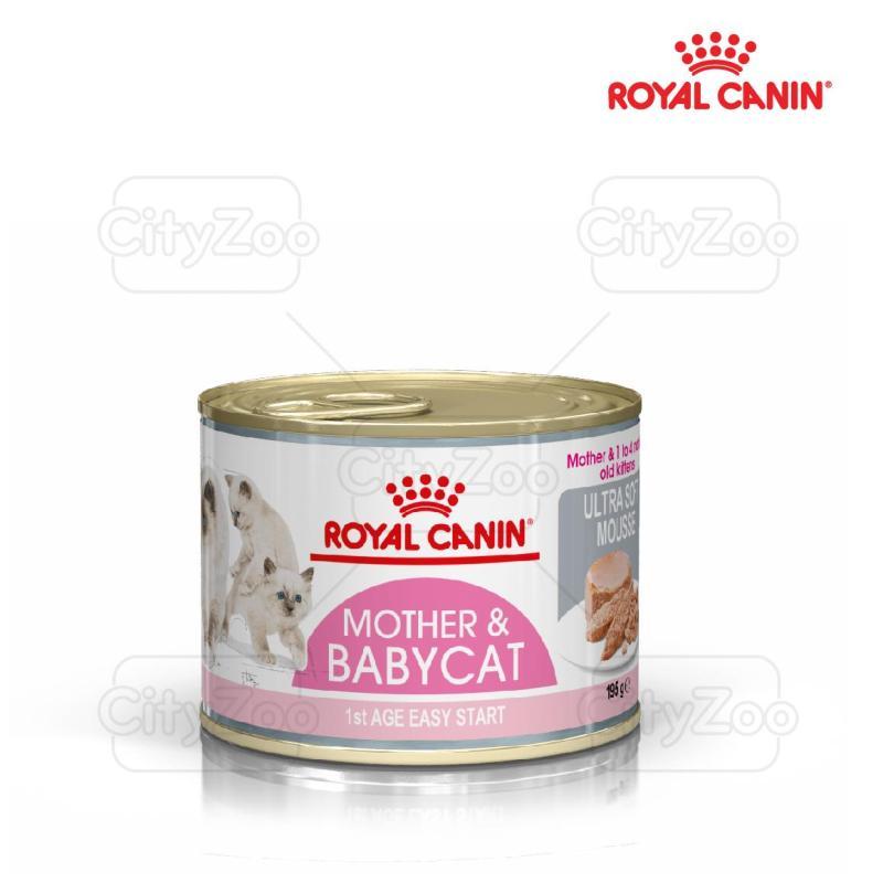 Thức ăn mềm cho mèo mẹ và mèo con Royal Canin Mother and Babycat 195g