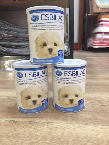 Sữa Bột Thay Thế Sữa Mẹ Esbilac USA cho chó con
