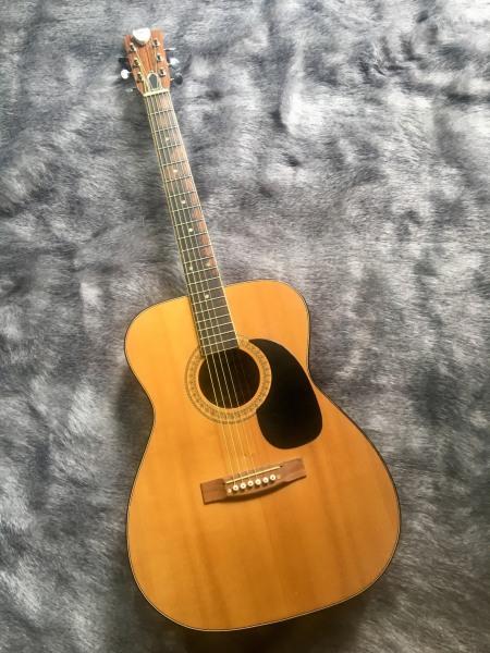 Đàn Guitar Acoustic SV650 - Đàn Guitar dành cho người mới học - Tặng Bao da