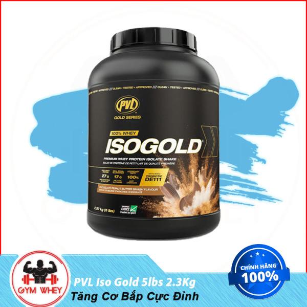 [HCM]Sữa Dinh Dưỡng Tăng Cơ Bắp Cực Đỉnh PVL Iso Gold 5lbs 2.3kg cao cấp
