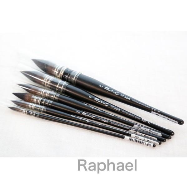 Mua Cọ vẽ Mop Raphael SoftAqua 805