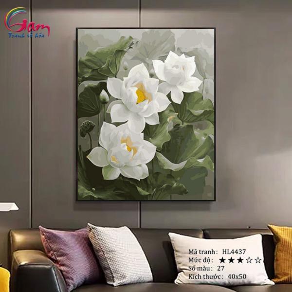 Tranh tô màu theo số Gam hoa sen trắng HL4437 đã căng khung 40x50cm
