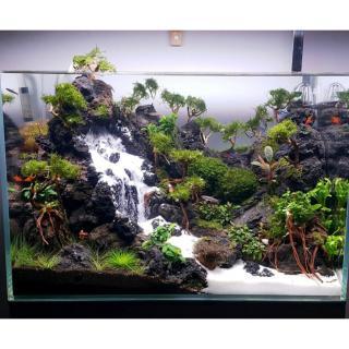 Cát Thạch Anh vật liệu lọc, trang trí bể cá, hồ thủy sinh (túi 200gr) 3