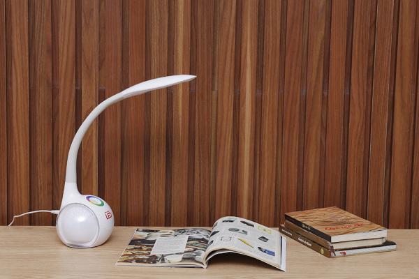 Đèn bàn học Điện Quang LDL05 3W
