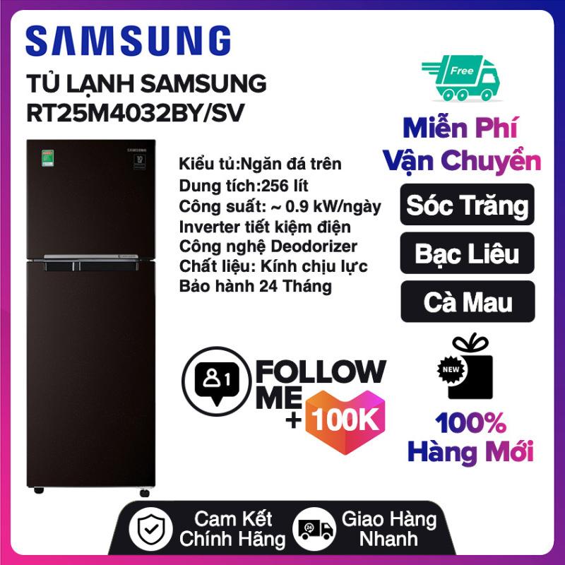 Tủ lạnh Samsung Inverter 256 lít RT25M4032BY/SV Mới 2020 Miễn phí vận chuyển nội thành Sóc Trăng, Bạc Liêu, Cà Mau