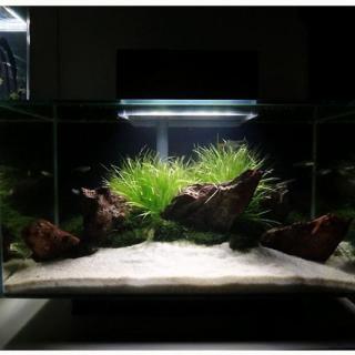 Cát Thạch Anh vật liệu lọc, trang trí bể cá, hồ thủy sinh (túi 200gr) 6