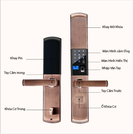 KHÓA CỬA VÂN TAY GIÁ RẺ Smart Lock SL01